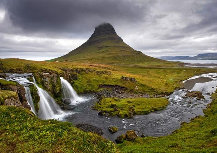 Flora Islandii zbadana i opisana