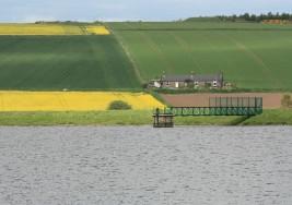 Polki na wsi – kobiety rolniczki